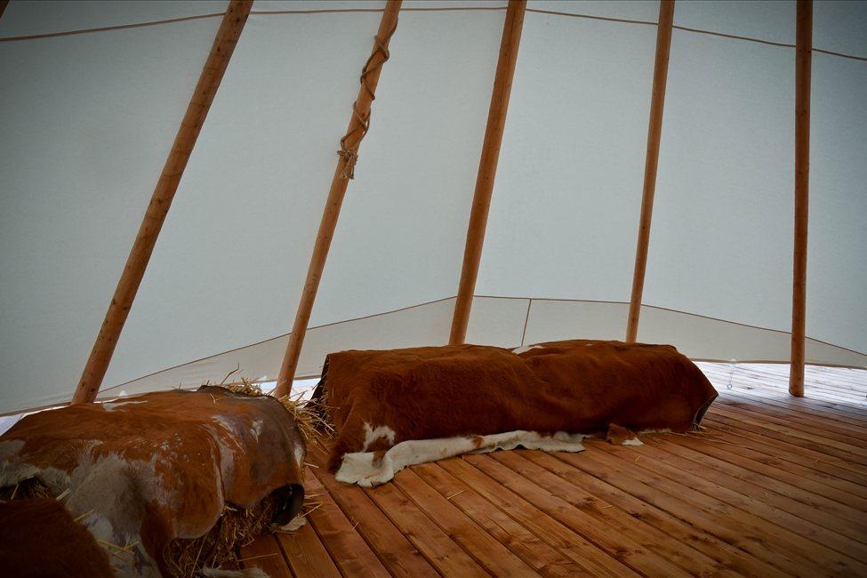 Notranjost šotora